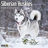 Siberian Huskies 2018 16 Month Wall Calendar 12 x 12 inches Bright Day Calendars Publishing
