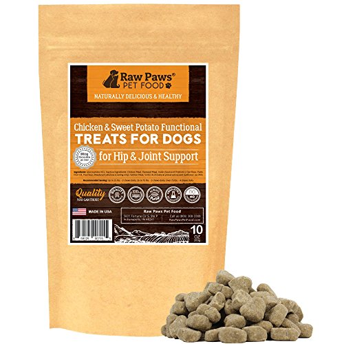 Raw Paws Hip and Joint Treats for Dogs, 10-oz/100-ct - USA Dog Joint Supplements Chewable - Natural Dog Arthritis Treatment - Provides Joint Relief for Dogs & Increased Mobility - Dog Glucosamine Chew