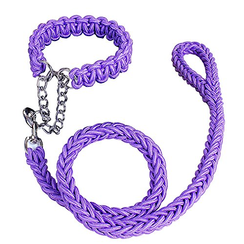 Dsoso Dog Leash, Martingale Braided Nylon Collar Double Colors with Solid Hand Crafted Rope Leash Pets Training Leash (Small, Purple) (Dog Martingale Lead)