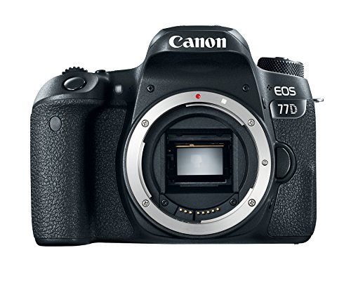 51iON0B1jmL - Black Friday Canon Camera Deals - Best Black Friday Deals Online