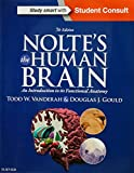 img - for Nolte's The Human Brain: An Introduction to its Functional Anatomy, 7e book / textbook / text book
