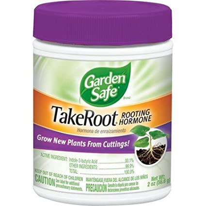 Amazon Garden Safe Take Root Rooting Hormone 2 Ounce2Pack Outdoor