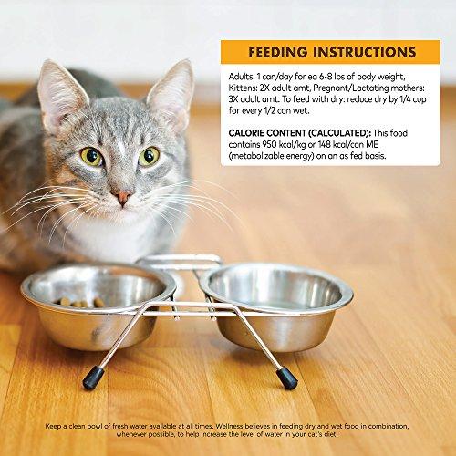 Wellness Core Cat Food New Canned Recipe