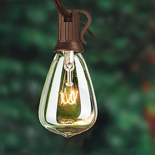 25FT Outdoor Patio Edison String Lights with 27 Clear Bulbs ST35 Edison Bulb String- 5 Watts 120 Voltage E12 Base -Brown Wire