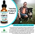 Hemp Oil for Dogs and Cats - 100% Organic Natural Calming Drops - Anxiety Support - Hip and Joint Health - Pain Relief Stress Reducer for Pets