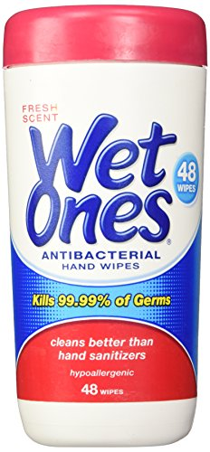 Wet Ones Fresh Scent Antibacterial Hand Wipes, 48 Count Cani