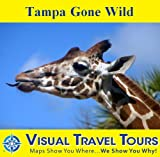 Tampa Gone Wild: A Self-guided Pictorial Sightseeing Tour (Visual Travel Tours Book 252) offers