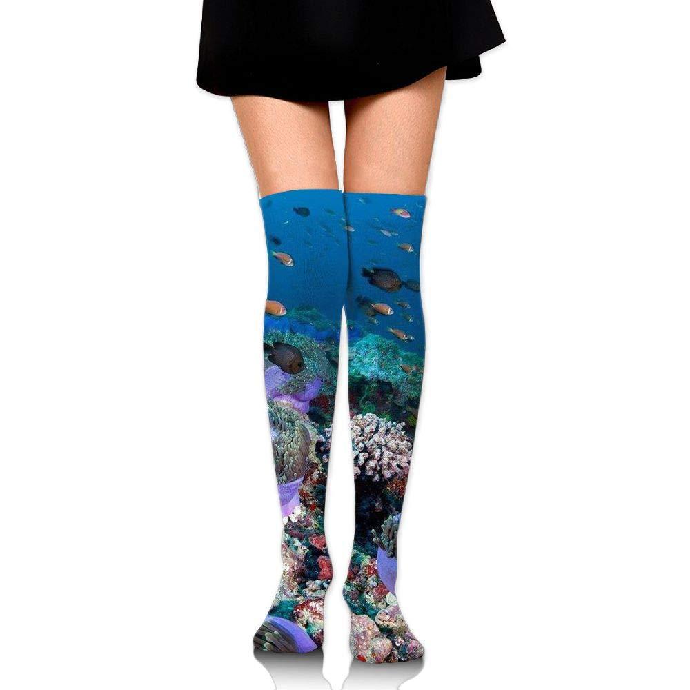 High Elasticity Girl Cotton Knee High Socks Uniform Coral And Fishes Women Tube Socks