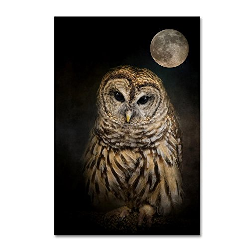 Barred Owl And The Moon by Jai Johnson, 16x24-Inch Canvas Wall Art (Canvas Owl On)