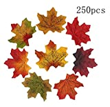 Artificial Maple Leaves Approximately Assorted Mixed Fall Rich Artificial Flower Fall Colored Silk Maple Leaves for Weddings, Autumn Party,Events and Decorating Hardwork (250pcs, 5 colors)