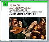 Bach: Motets BWV 225-231, Cantatas