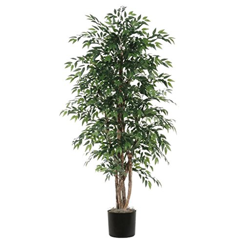 (Vickerman TEX1460-07 Everyday Smilax Tree, Green, 6')