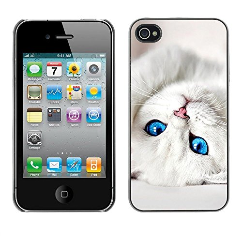 TopCaseStore / caoutchouc Hard Case Housse de protection la Peau - Cute Baby Kitten Cat Eyes White Pet - Apple iPhone 4 / 4S