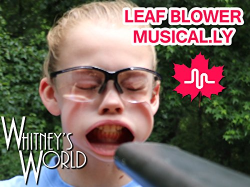 Leafblower Musical.ly