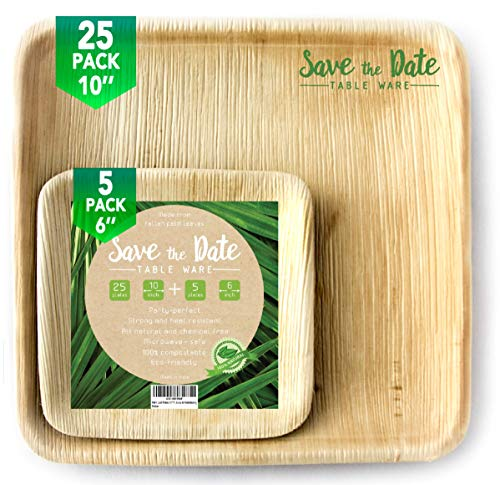 10'' Square Disposable Bamboo, Areca Palm Leaf Plates (25 Pack) + 6