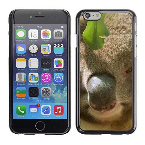 Premio Sottile Slim Cassa Custodia Case Cover Shell // F00032493 Petit panda // Apple iPhone 6 6S 6G 4.7""
