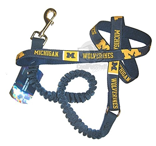 hunter-ncaa-michigan-wolverines-bungee-lead-for-pets-large-6