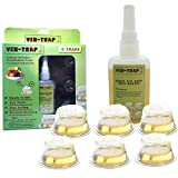 6 Pack Fruit Fly Trap | Safe, Non-Toxic with No
