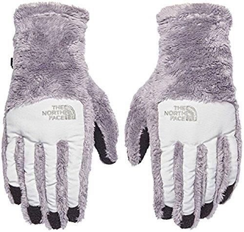 (The North Face Women's Women's Denali Thermal Etip Glove Metallic Silver/ Lunar Ice Grey Large)