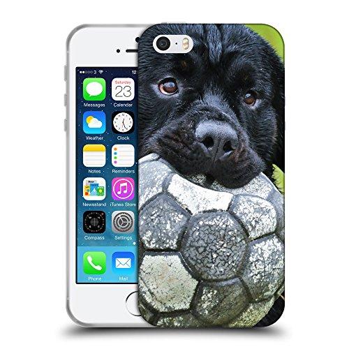 Just Phone Cases Coque de Protection TPU Silicone Case pour // V00004327 chiot noir joue avec le ballon // Apple iPhone 5 5S 5G SE