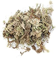12L Sphagnum Moss, Water Moss Dry Moss Water Grass Substrates for Orchid Phalaenopsis Moss Lichen, Natural Pea