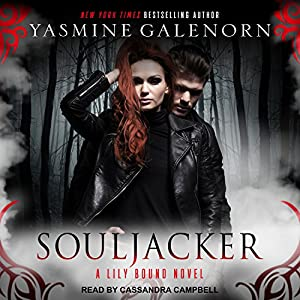 Souljacker Audiobook