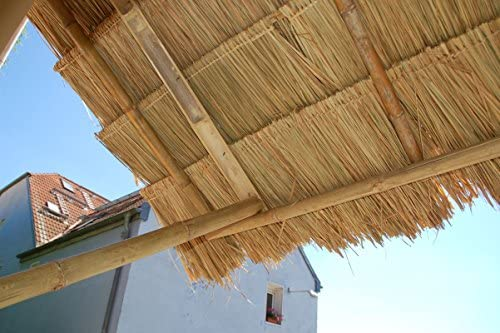 Panel natural para tejado de palma (115 cm) tejado exótico, refugio jardín, gazebo, sombrilla pergola (12111)