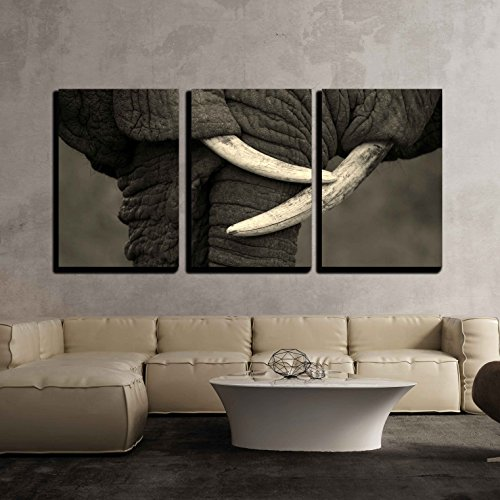 Two Elephants Interact and Communicate in This Beautiful Black and White Image x3 Panels