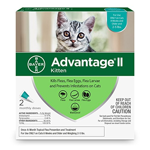 Bayer Advantage II Kitten Flea Treatment for Kittens, 2-5 lb, 2 doses by Bayer Animal Health (Image #2)
