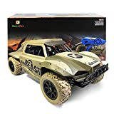 Best RC Cars - Gizmovine Remote Control Cars 2019 Version 1: 18 Review