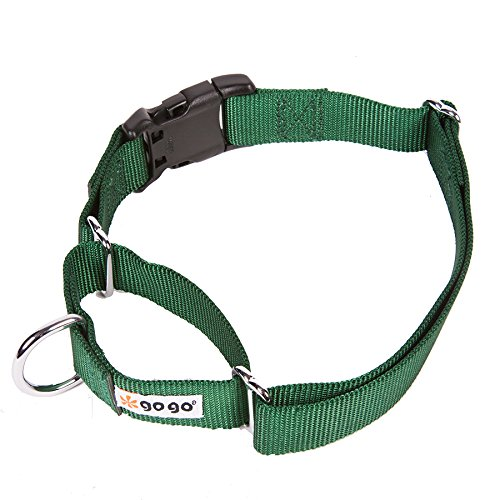 GoGo Pet Products Martingale Gentle Training Collar, Medium/Large, Hunter Green For Sale