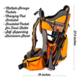 Premium Baby Backpack Carrier for Hiking with Kids