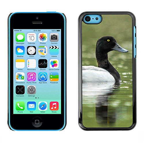 Premio Sottile Slim Cassa Custodia Case Cover Shell // F00014057 oiseau // Apple iPhone 5C