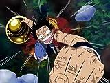 One Piece: Season 3, Fourth Voyage