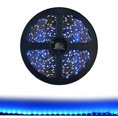 Hitlights Blue Flexible Ribbon LED Strip Light, 300 LEDs, 5 Meters