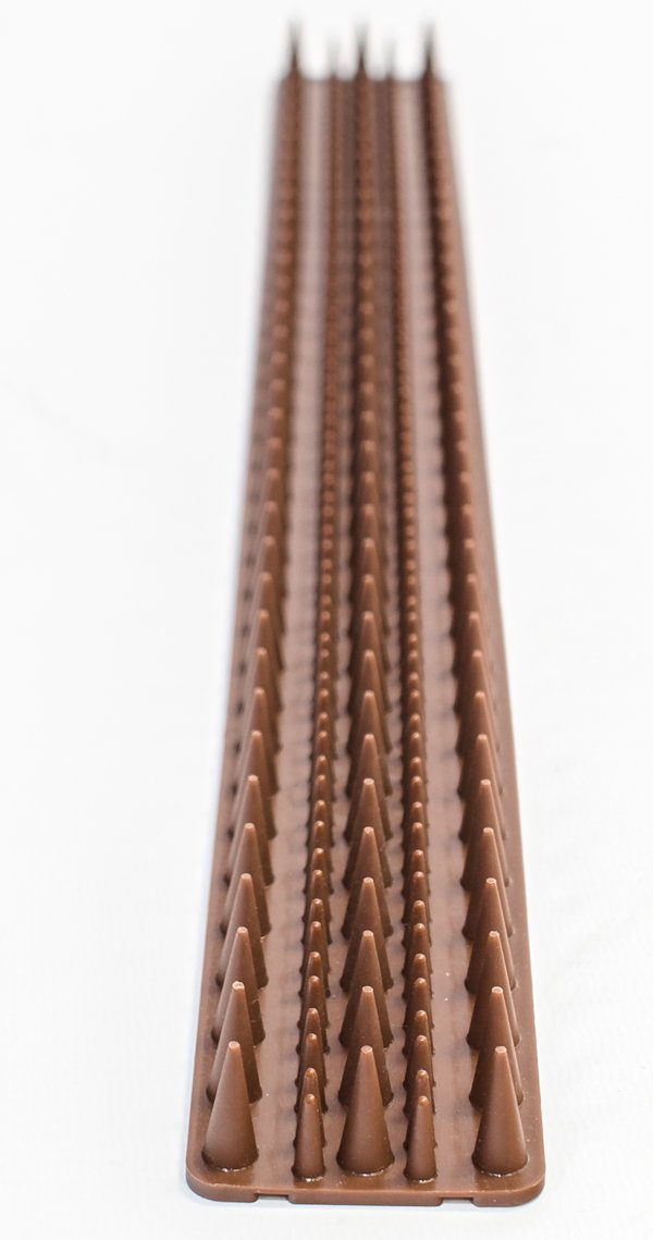 Primrose - Conjunto de 30 pinchos de seguridad para muros y vallas, polipropileno, 15 m, color marrón: Amazon.es: Jardín