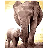 SUBERY DIY Oil Painting Paint by Numbers Kits Image Drawing On Canvas by Hand Coloring Arts Crafts - Elephant's Father's Love 16x20 inches (Frameless)