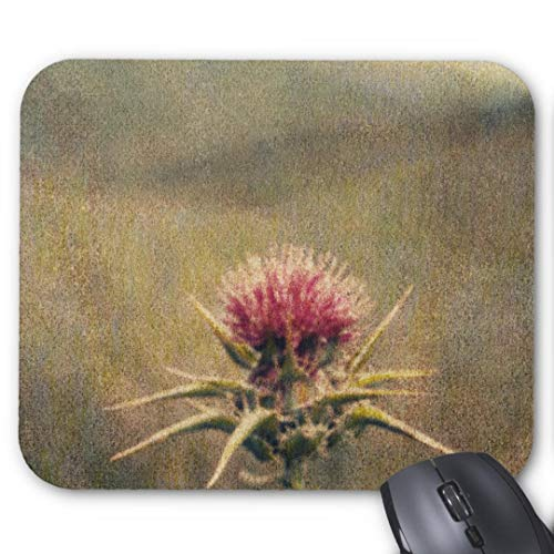 Gaming Mouse Pad Non-Slip Water Resistant Rubber Base Cloth Computer Mouse Mat) histle by Jennifer Kennard Mouse ()