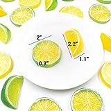 SNAIL GARDEN 30Pcs Artificial Lemon Slices