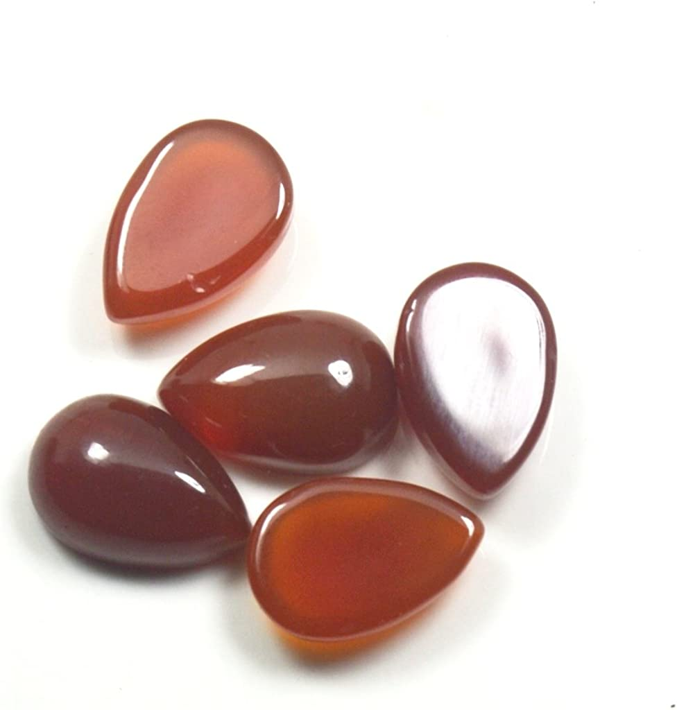 Details about  /SUPERB Lot Natural Carnelian 5x5 mm Round Faceted Cut Loose Gemstone