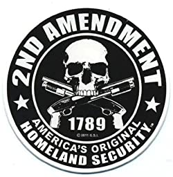 Motorcycle Helmet Sticker - 2nd Amendment America\'s Original Homeland Security