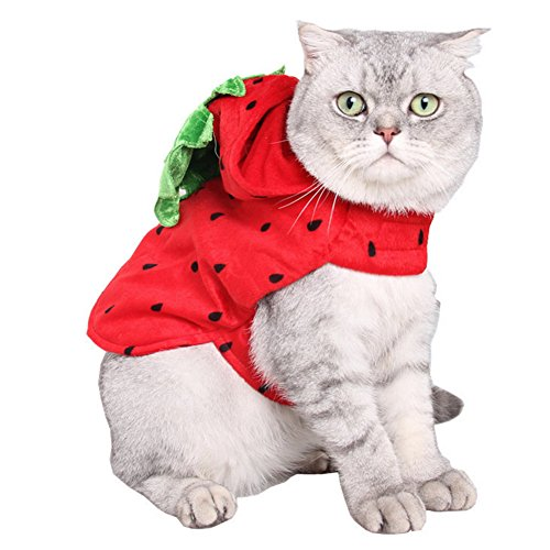 ZTL Cat Dog Strawberry Hoody Clothes Halloween Costume