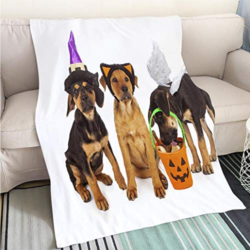 BEICICI Custom homelife Abstract Home Decor Printing Blanket Puppies Dressed for Halloween Fashion Ultra Cozy Flannel Blanket ()