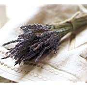 Seconds Dried Grosso Field Cut Lavender Bunches