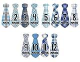 Monthly Baby Stickers Necktie Tie Boy Month Milestone Sticker Months in Motion (776)