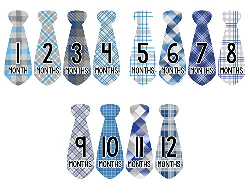 Stickers Milestone Months Motion 776 product image