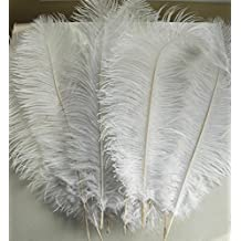 LanShi Natural 12-14inch(30-35cm) Ostrich Feathers Plume for Wedding Centerpieces Home Decoration White 10PCS by LanShi