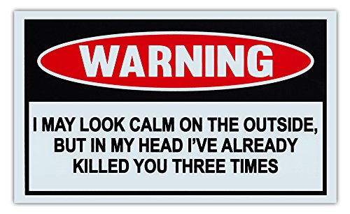 Crazy Sticker Guy Funny Warning Signs - May Look Calm, But in My Head Already Killed You 3 Times - Man Cave, Garage, Work Shop