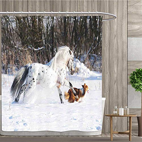 Anshesix Horses,Shower Curtains,Legendary Appaloosa Pony and Sable Border Collie Runs Gallop in Winter Photo Print,Bathroom Decor Set with Hooks,Multicolor,Size:W60 x L72 inch