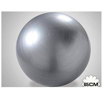 Pelota Suiza Gym Ball 65CM Pelota Pilates Fitness Yoga Ball ...